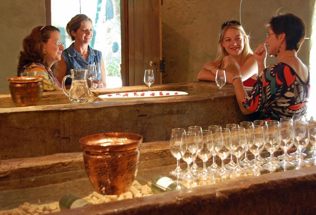 Adamastor & Bacchus Cape Winelands Tours