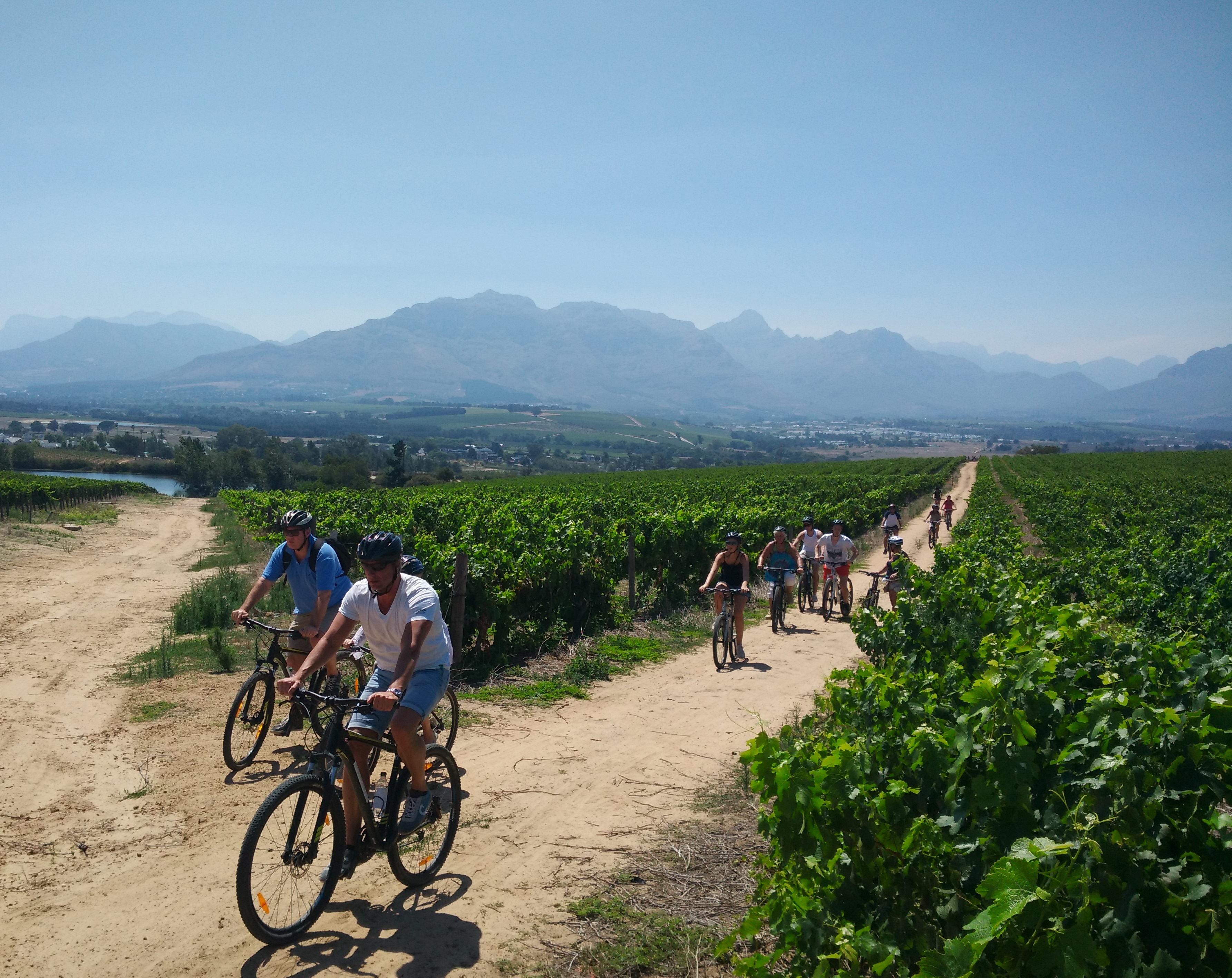 Bikes 'n Wines