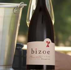 Bizoe Wine Tours